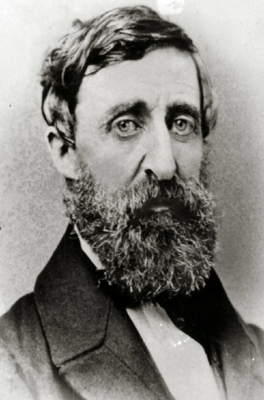 henry david thoreau turns chelmsford public library
