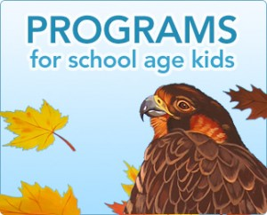 kids-4-programs-big