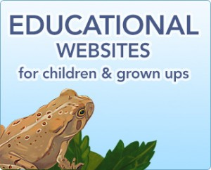 kids-5-educational-sites